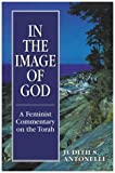 img - for In the Image of God: A Feminist Commentary on the Torah book / textbook / text book