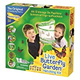 Insect Lore Live Butterfly Garden Hatching Kit Boys Girls Kids Children Play Set
