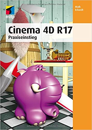 Cinema 4D R 17: Praxiseinstieg