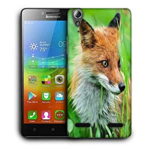 Snoogg Small Fox Printed Protective Phone Back Case Cover For Lenovo A6000