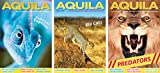 New Leaf Publishing Aquila Children's Magazine - Animal Antics Bundle - Predators, Big Cats and Reptiles