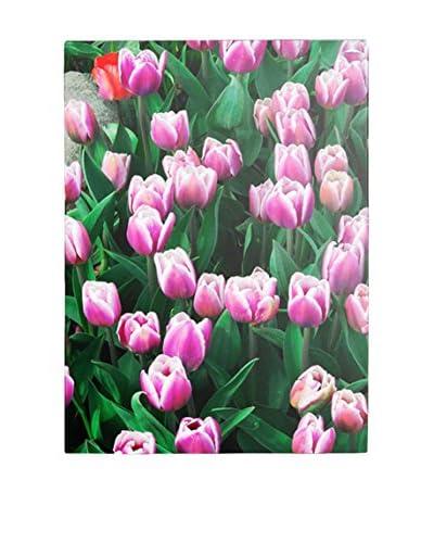Kurt Shaffer Purple White Tulips and One Red Canvas Wall Art