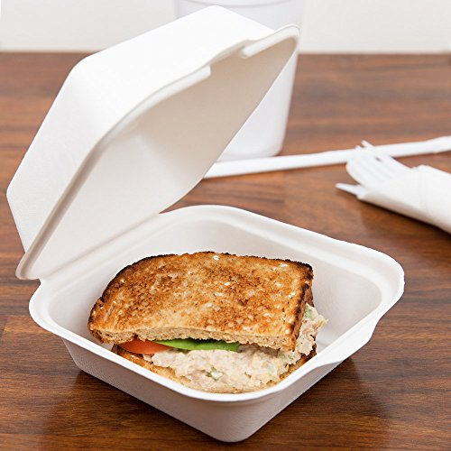 Take Out Boxes Clamshell Hinged Biodegradable To Go Food Containers - 6