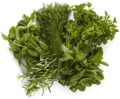 garden-herb-bundle