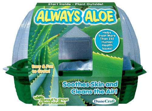 Dunecraft Always Aloe Science Kit