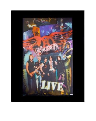 Aerosmith Live Framed 3-D Hologram Poster As You See