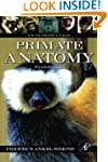 Primate Anatomy: An Introduction