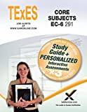 img - for TExES Core Subjects EC-6 291 Book and Online book / textbook / text book