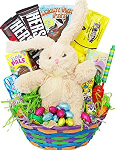 Gourmet Easter Gift Basket - Premade and Shrink-Wrapped, Kids, Boys, Girls