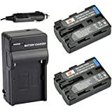 DSTE® 2x NP-FM500H Battery + DC01 Travel and Car Charger Adapter for Sony Alpha SLT A77V A77II A350 A450 A500 A550 A700 A850 A900 CLM-V55 DSLR Camera as NP-FM500