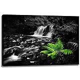 Arroyo salvaje planta de negro y verde, Formato: 100x70 cm pintura, en lienzo cubierto, imágenes enormes XXL por...