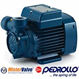 Pedrollo Electric Water Pump PQm peripheral impeller pump - PQm 81-BS 230V 0.7 HP distribution of water in combination with small or medium sized pressure tanks, and for the irrigation of gardens