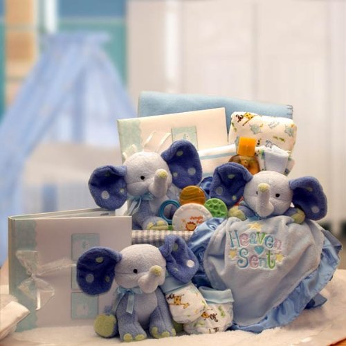 A Baby Is Heaven Sent Blue Gift Basket