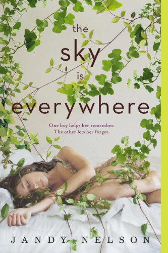 The Sky Is Everywhere ebook