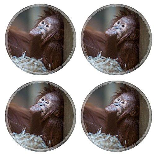 Orangutan Coaster Set<br>Natural Rubber Coasters