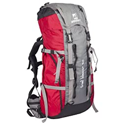 Wildcraft Red Hiking Backpack (8903338319207)
