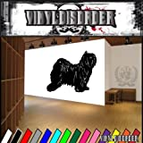 Dogs companion tibetan terrier Vinyl Decal Wall Art Sticker Mural
