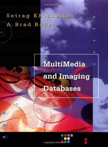 Multimedia and Imaging Databases
