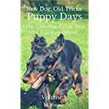 New Dog, Old Tricks: Puppy Training, Dog Training, and Self Help Lessons from Otis the Gordon Setter: Guide to Puppy Training, Dog Training, Dog Care, Puppy Care, Self Help, and Self Improvement. ~ M Young