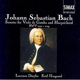 Sonata For Viola Da Gamba And Harpsichord, D Major: 1: Adagio