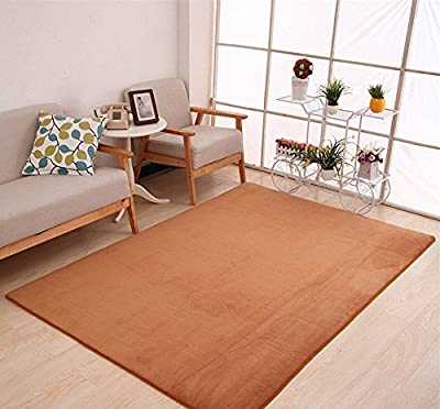 "Adasmile Anti-slip Large Area Rugs/Floor Mat/Cover Carpets with Memory Foam Coral Velvet Fabric for Living Room/bedroom/Nursery/Teens/Home Decorate,Khaki,15.7""x23.6"""