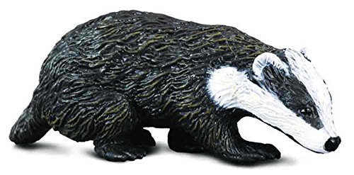CollectA Eurasian Badger Figure