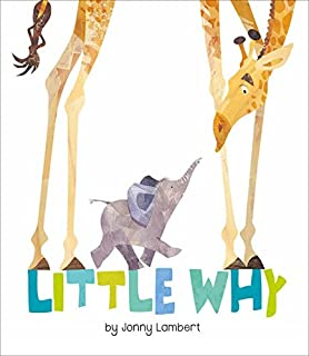 Book Cover: Little Why