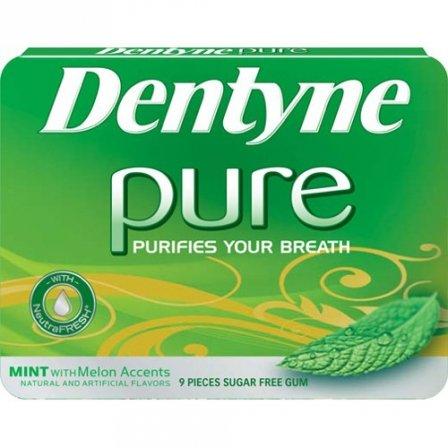 dentyne-pure-mint-melon-068-oz-18g