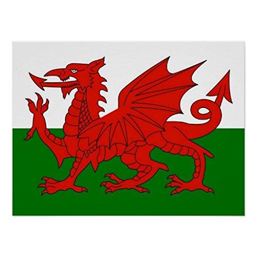 Welsh National Flag Poster