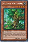 Yu-Gi-Oh! - Naturia White Oak (HA04-EN051) - Hidden Arsenal 4: Trishulas Triumph - 1st Edition - Secret Rare