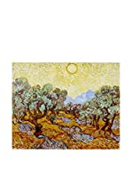 Especial Arte Lienzo Olive Trees Multicolor