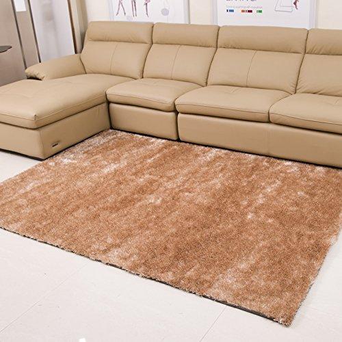 il-salotto-tavolino-la-moquette-della-camera-da-letto-su-tappeti-di-seta-con-livello-di-crittografia