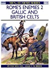 Rome's Enemies (2): Gallic and British Celts (Men-at-Arms)