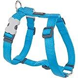 Red Dingo Plain Dog Harness, Medium, 20 mm, Turquoise