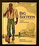 Big Sixteen (0688023509) by Mary Calhoun