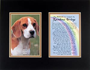 Beagle Rainbow Bridge Pet Dog Bereavement Wall Decor Personalized