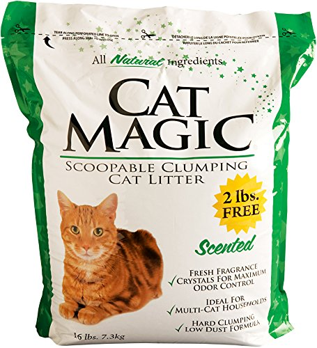 Cat magic litter