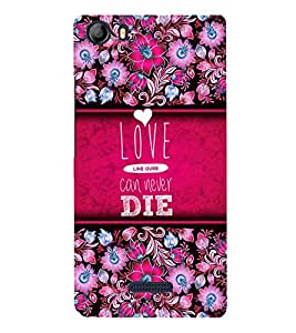 Love Can Never Die 3D Hard Polycarbonate Designer Back Case Cover for Micromax Canvas 5 E481