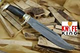 """MASSIVE SALE"" Knife King Custom damascus bowie knife. Burl wood handle.Razor sharp. Solid quality Bowie."
