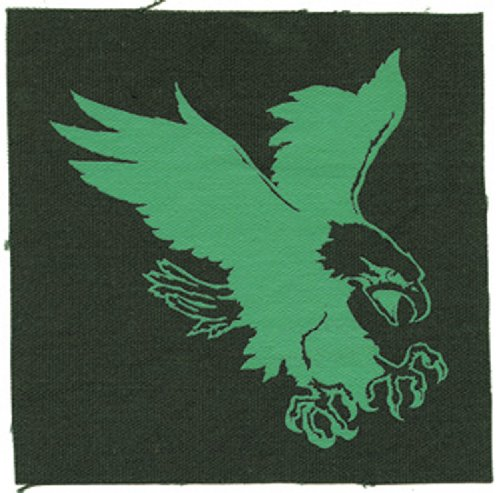 Application Generic Eagle Canvas Patch