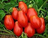 SOIL ME Tomato Roma seeds