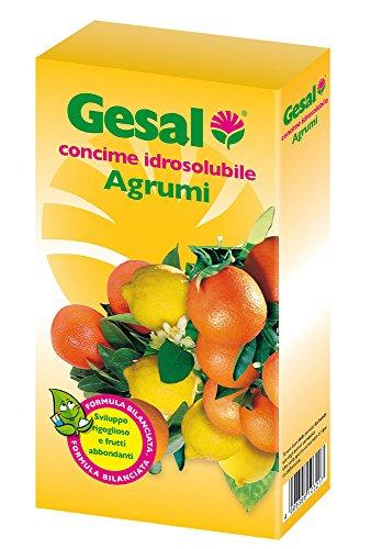gesal-2032102005-fertilizers-idrosolubili-citrus-fruits-white