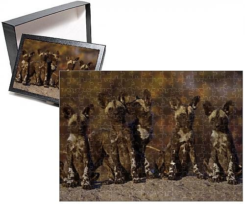 Photo Jigsaw Puzzle of African Wild Dogs group of pups at den