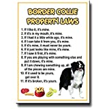 Border Collie Property Laws Fridge Magnet No 1