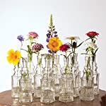 Luna Bazaar Small Vintage Glass Bottle Set (6.5-Inch, Square Design, Clear, Set of 12) - Flower Bud Vases Bulk - For Party and Wedding Centerpieces