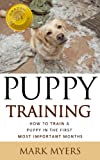 Puppy Training: The Ultimate Guide on How to Train a Puppy in the First Most Important Months