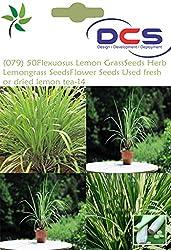 DCS (079) 50 EAST INDIA C. Flexuosus Lemon Grass Seeds Herb Lemongrass Seeds Flower Seeds Used fresh or dried lemon tea-14
