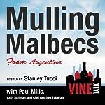 Mulling Malbecs from Argentina: Vine Talk Episode 105 | Vine Talk