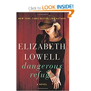A Novel  - Elizabeth Lowell