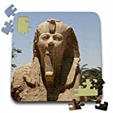 Angelique Cajam Egypt - Egyptian Statutes up close - 10x10 Inch Puzzle (pzl_26812_2)
